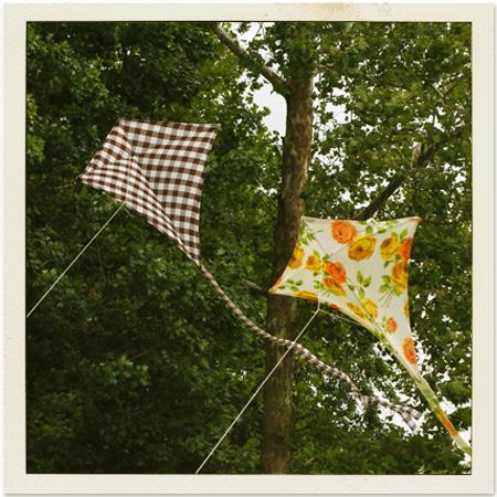 Main kites